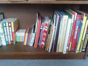 Book Shelf Oldest Son