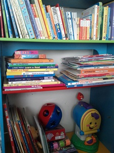 Book Shelf Youngest Son