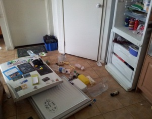Smashed Fridge Door